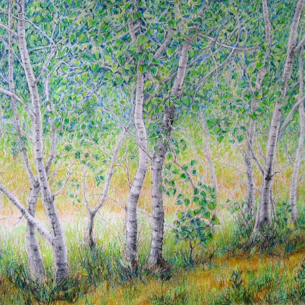 Aspen Dance, Sleeping Bear Dune