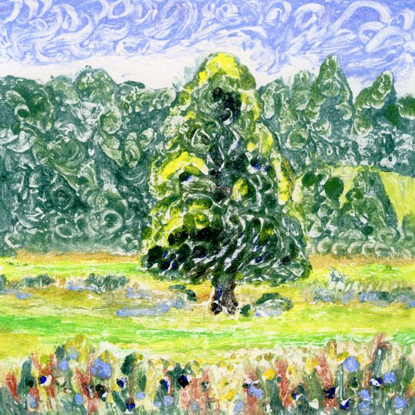 Tree 1 Hambleden Brook