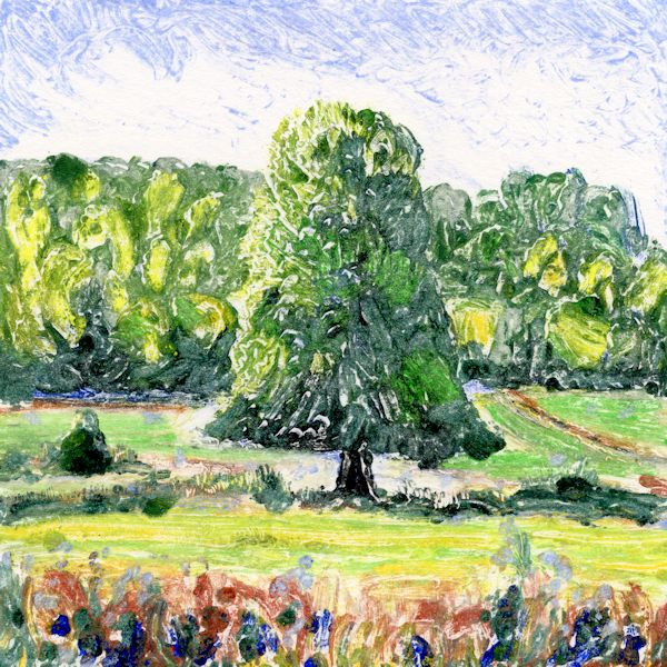 Tree 2 Hambleden Brook