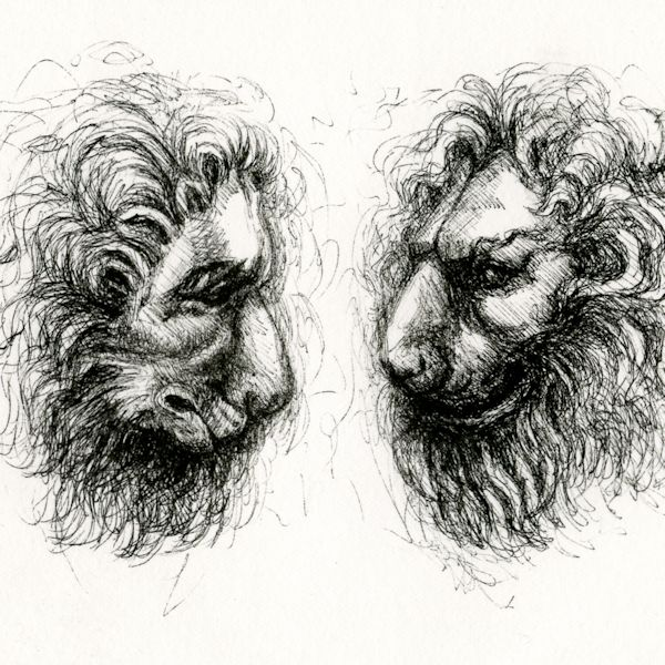 Lions from a Pisano Pulpit